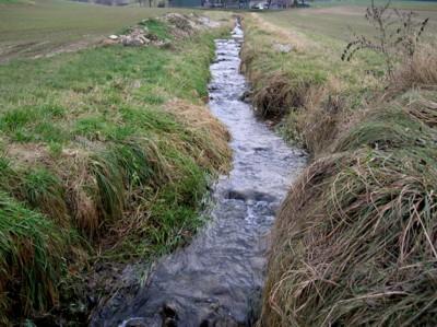 Straightened Brook