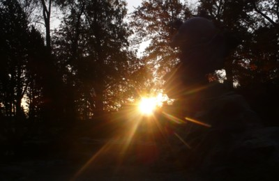 morning_4