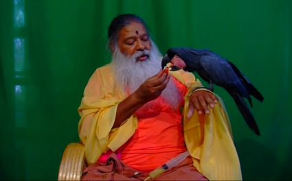 Feeding_the_Birds_of_Shuka_Vana